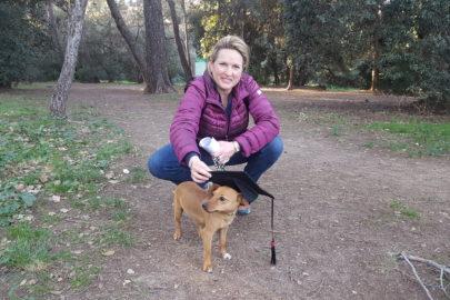 Cheyenne – Jack Russell croisé Fox Terrier