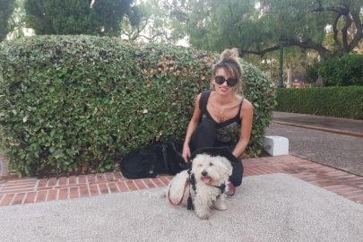 Pilou et Cookie